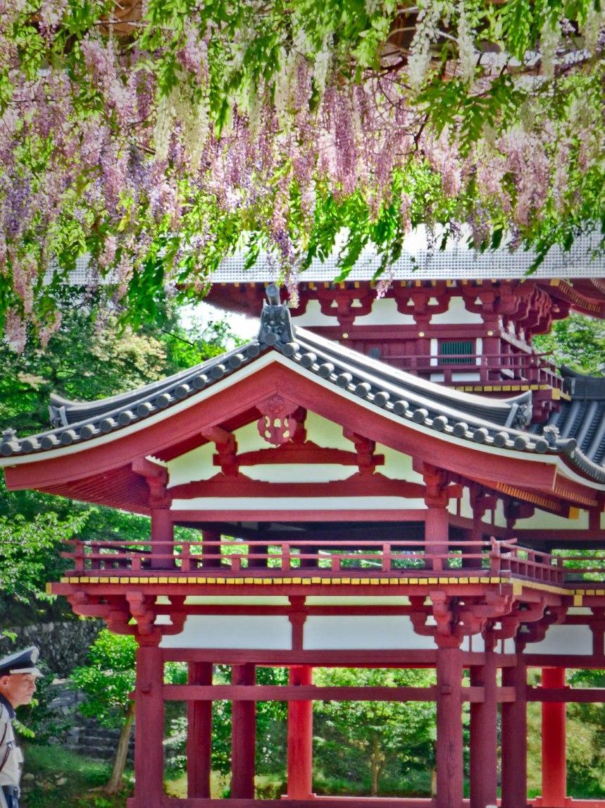 jardins byodo in temple