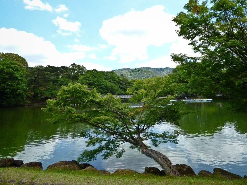 nara magnifique vue lac