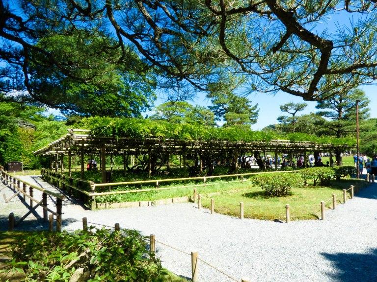 uji jardins byodoin temple