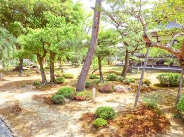 jardin daikakuji