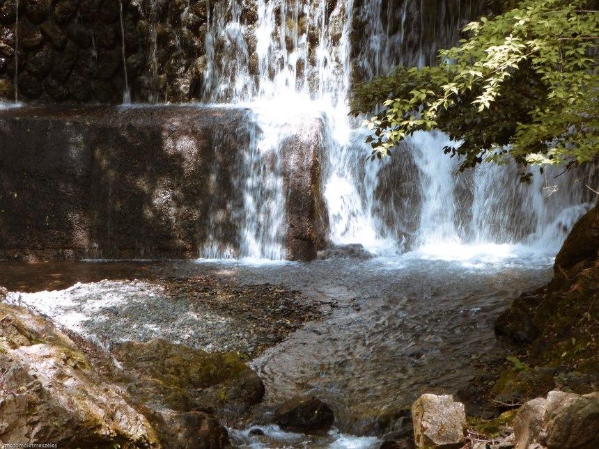 nature zen