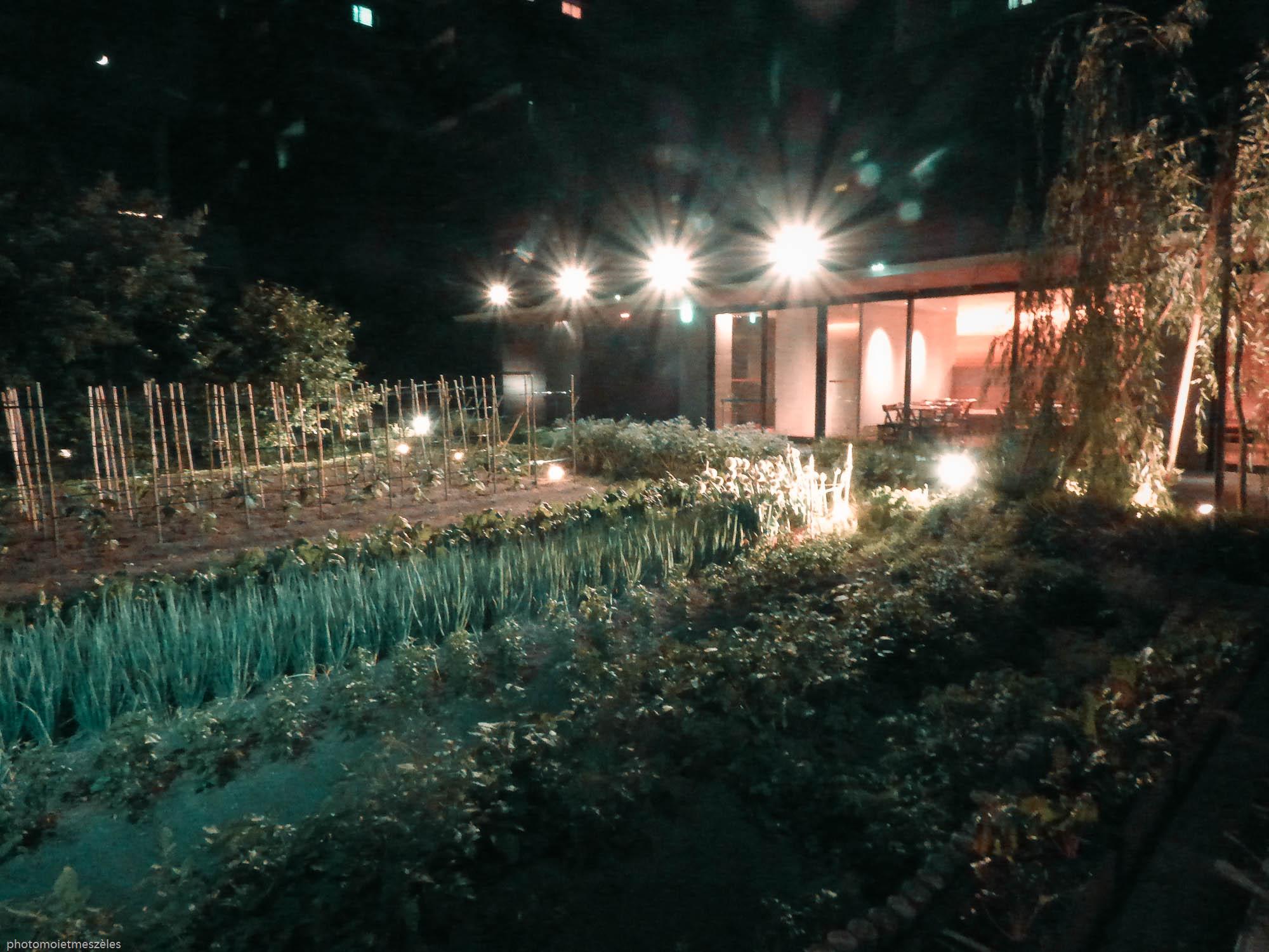 restaurant kyoto jardin