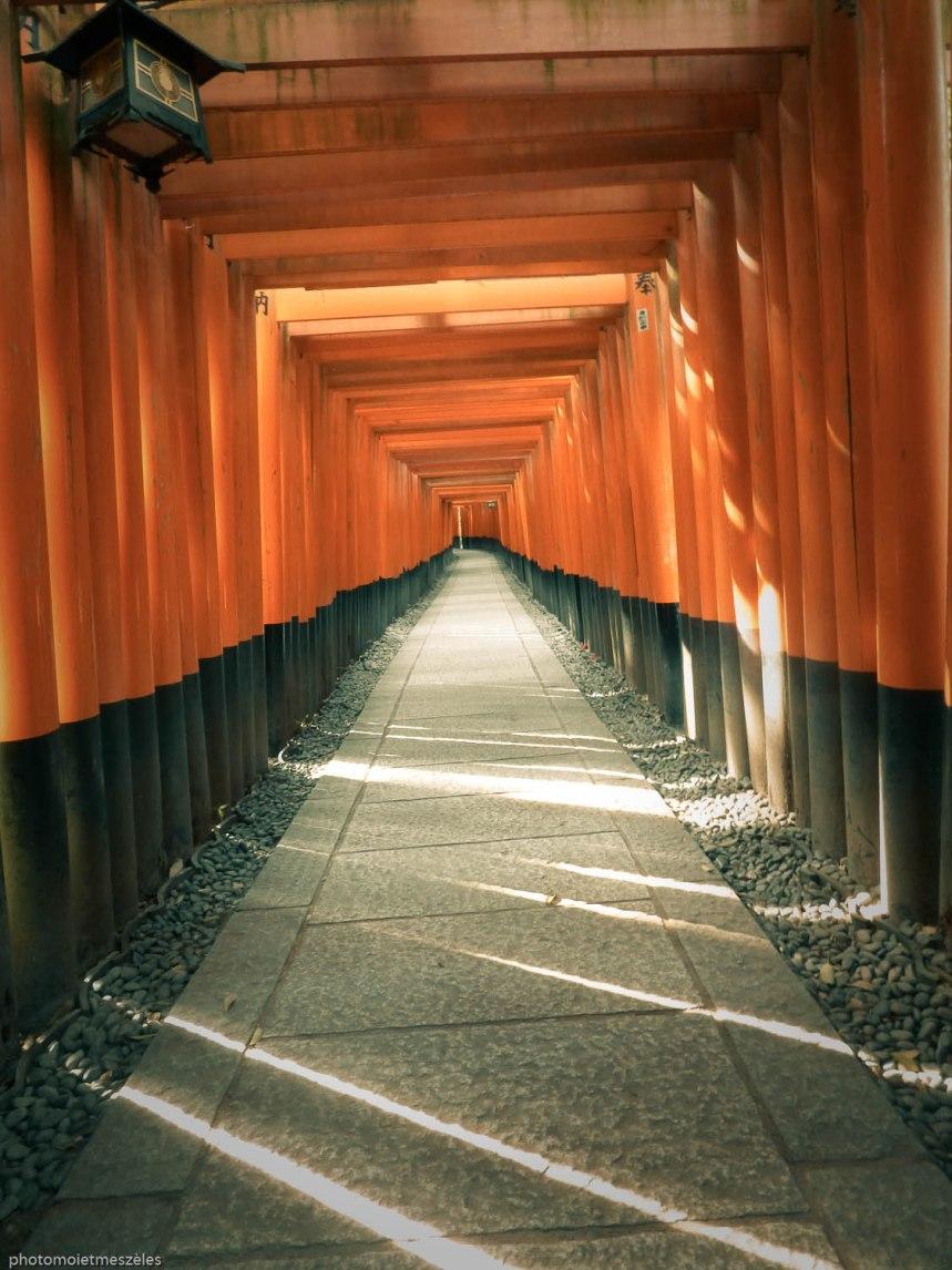 torii (2)