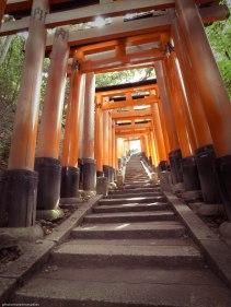 torii (3)