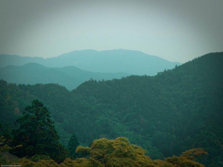 vue mont kurama