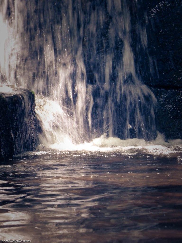 cascade parc ueno