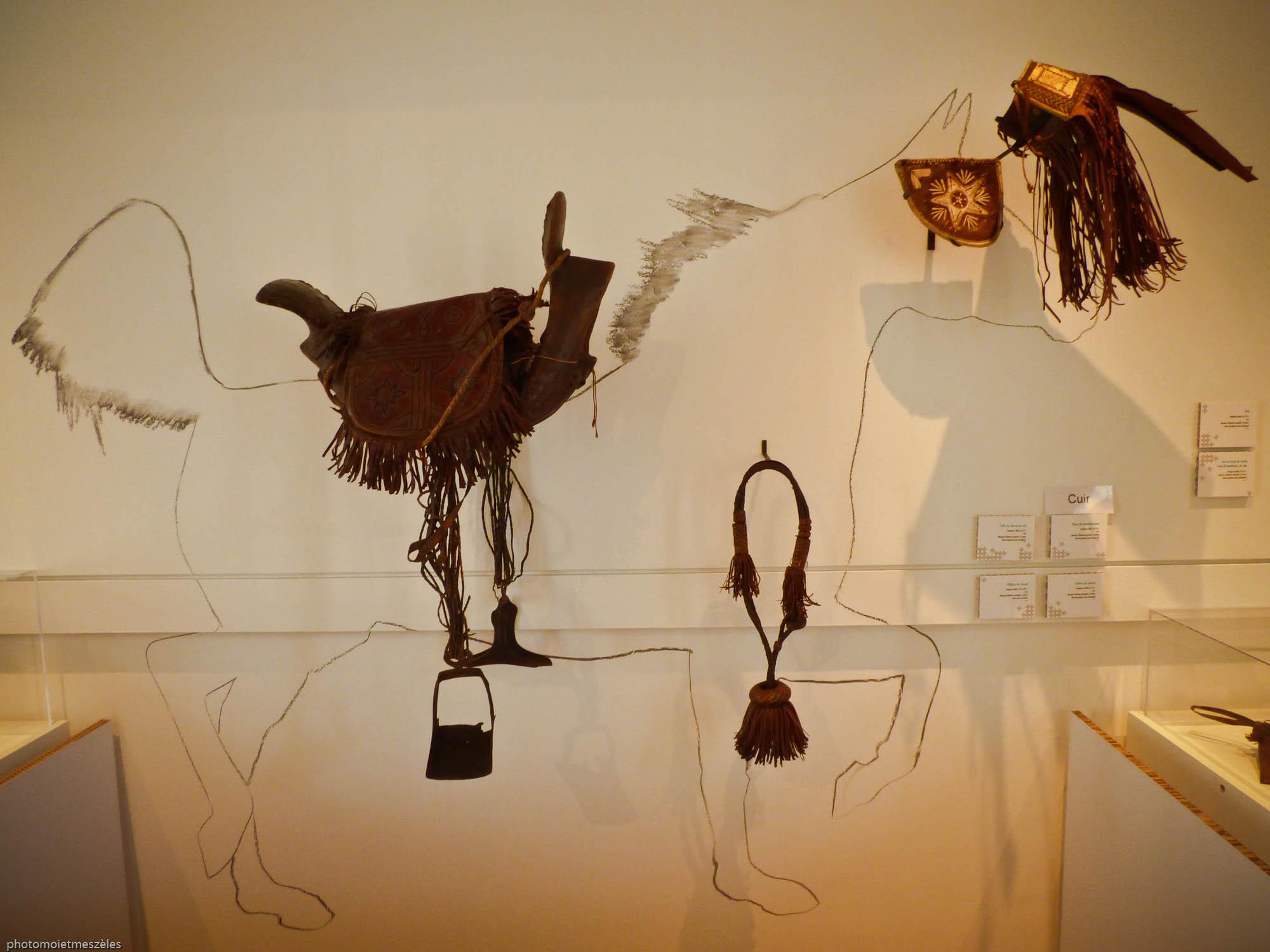 objets africains musée d'histoire naturelle du Havre