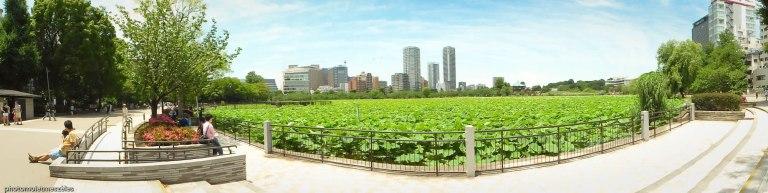 panoramique ueno parc tokyo