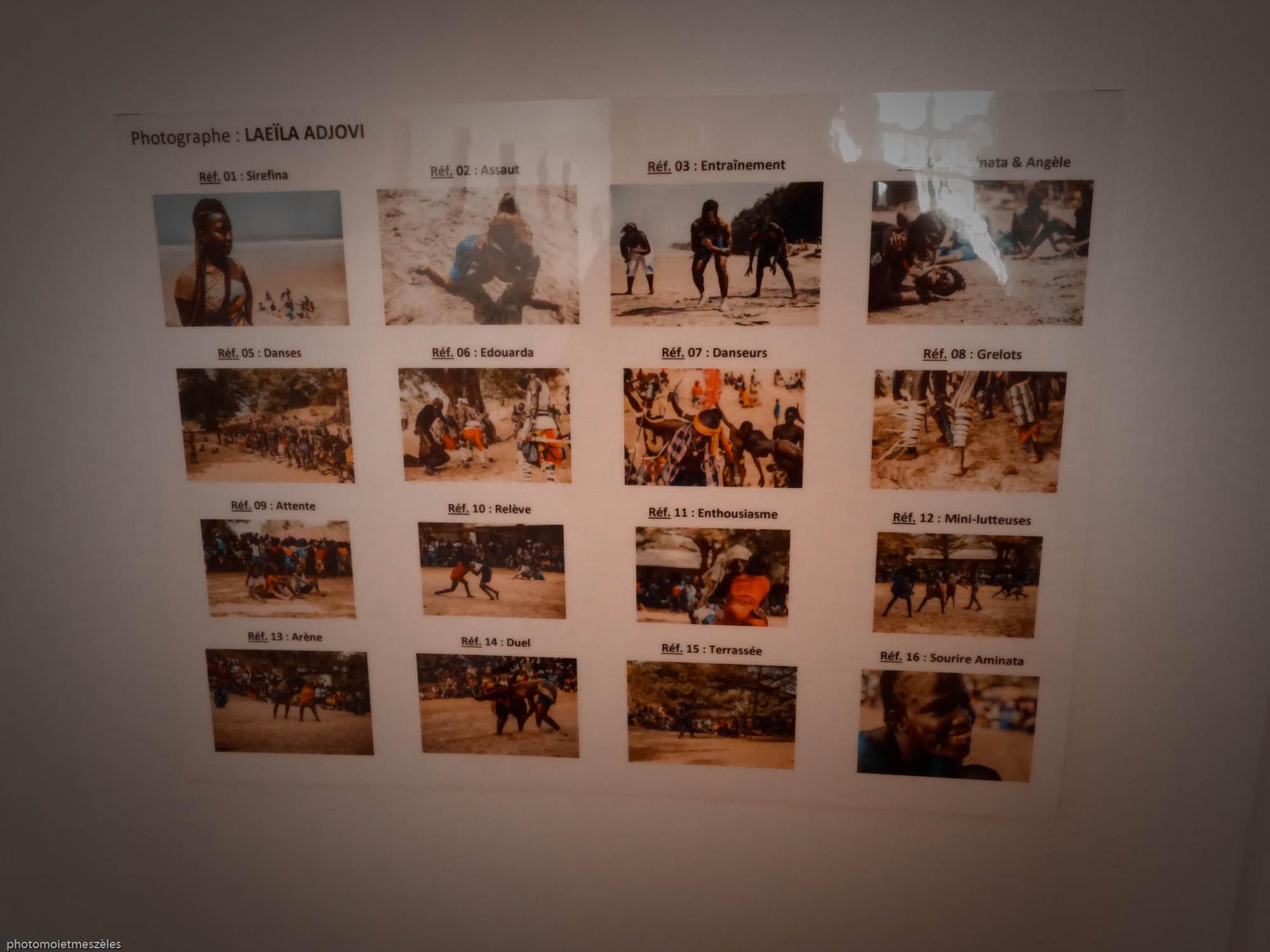 série les femme dans l'arène de Laeila Adjovi Musée d'histoire naturelle Le Havre
