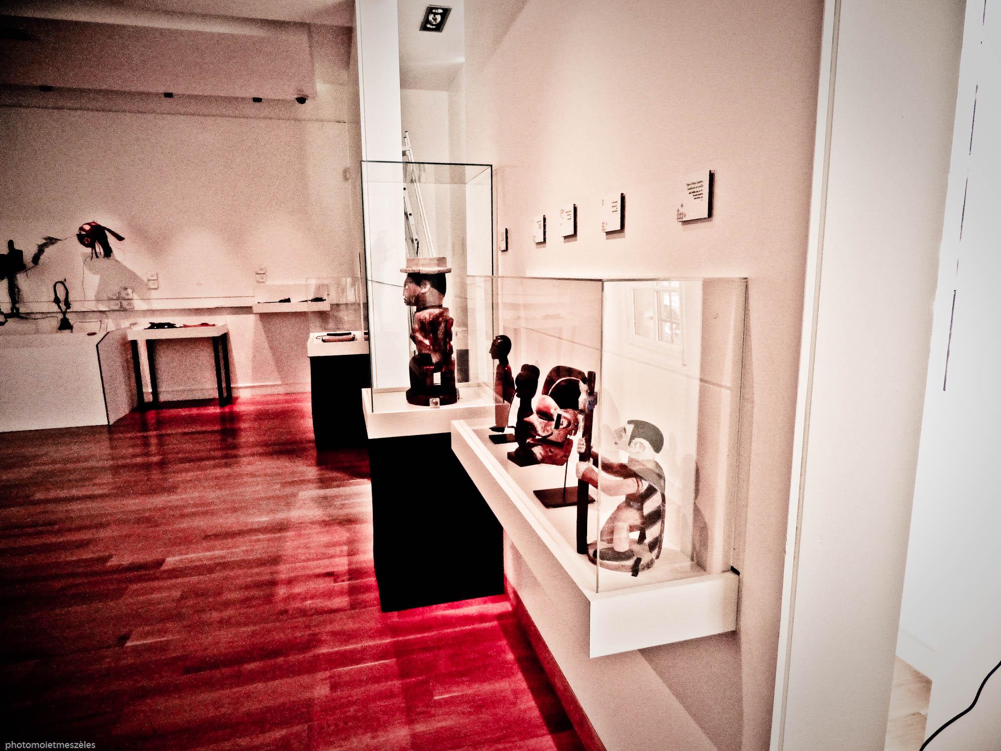 statuaires africains Musée d'histoire naturelle du Havre