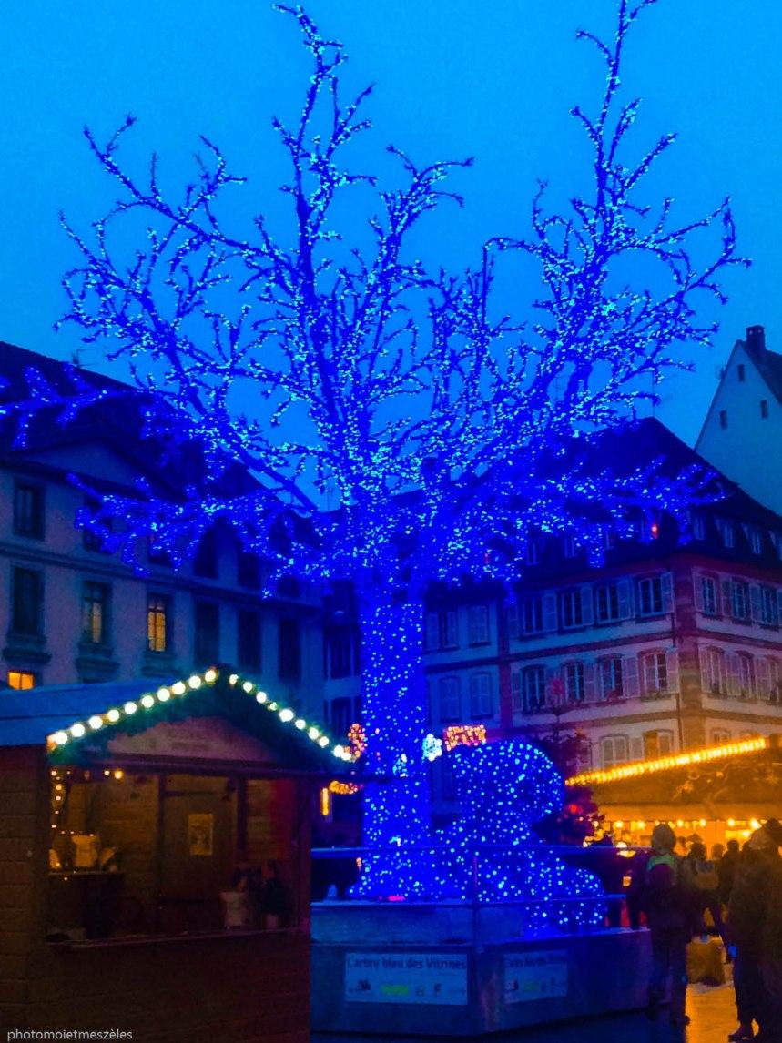 L'arbre bleu marché Islandais Strasbourg