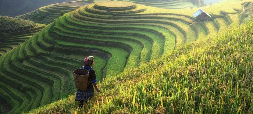 Les enjeux d'un voyage autour du monde – choix et face cachée d'une tellepréparation