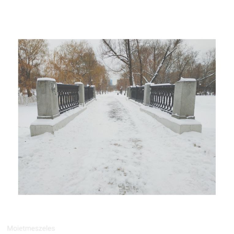parc du couvent Novodievitchi Moscou
