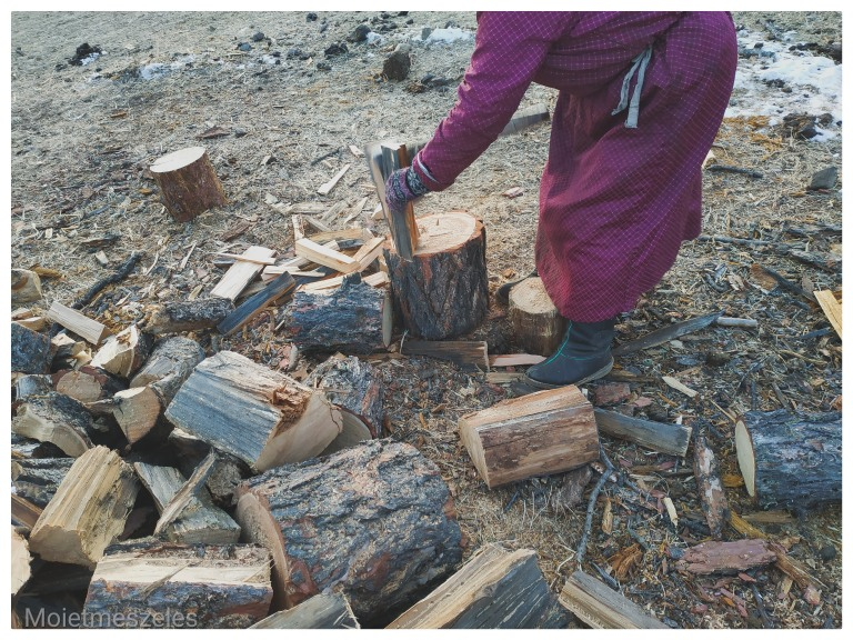 couper du bois mongolie famille nomade