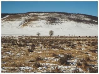 montagne steppe mongolie hiver arkhangai