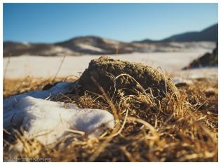 motte de terre paysage mongolie hiver arkhangai